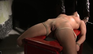 Nikky gets strapped down to the rear and has their resembling nipples tweaked