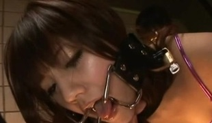 Rei Mizuna Japanese doll gets some unreasoned action